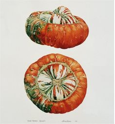 Drum Beets: roasted turban squash soup