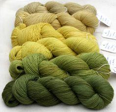 Färben mit Pflanzen lavendelblau: Hier ist der nächste Grüne . . .