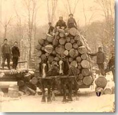 Logging has been one of the key industries in Adirondack towns for nearly 200 years.