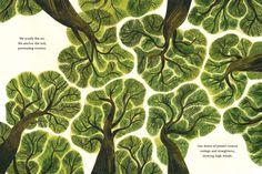 Children's Book Illustration, Botanical Illustration, Illustrations, Art Graphique, Grafik Design, Pretty Art, Art Inspo, Art Hoe, Cool Art