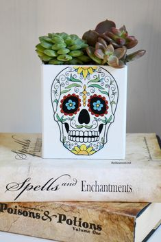 DIY Sugar Skull Succulent Planter by MichaelsMakers The Idea Room