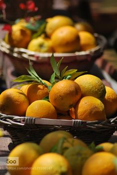 Cretan Oranges - Pinned by Mak Khalaf Take a pick they are all delicious Food Orangescloseupcolorfoodfreshfruithealthynatural by ifi-billyvasileiadis