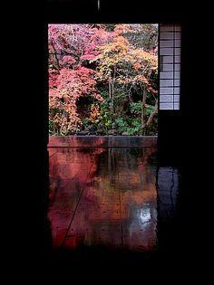 Jissou-in Temple, Kyoto, Japan 実相院 京都