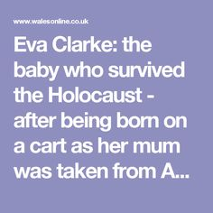 Eva Clarke: the baby who survived the Holocaust - after being born on a cart as her mum was taken from Auschwitz to another death camp - Wales Online