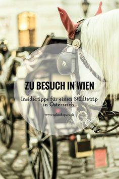 Naschmarkt, Prater, Schloss Schönbrunn und Kaffeehäuser - Die österreichische Hauptstadt ist definitiv eine Reise wert. Warum das so ist, erfahrt ihr in meinem ausführlichen Reisebericht – hier kommen die besten Wien Insidertipps!