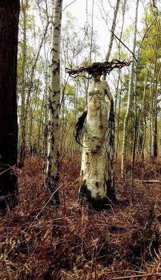 Nikdy sa nevrátim do lesa 😳😂