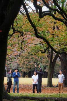 Tour Eiffel, Passage Piéton, Hachiko, Couple Photos, Travel, Meiji Shrine, Green Lights, Wine Cask, Sky View