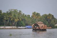 In October 2015, a state called Kerala stole my heart.The lush tea plantations surrounded the winding roads, thedrop in temperature, the cool breeze hitting your face, the authenticfish curries …