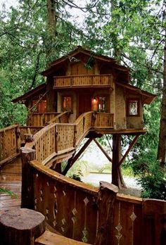 Inhabited Tree House, Seattle Washington. Awesome! Makes me think of Swiss Family Robinson.