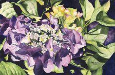 8 x 10 Original Watercolor Print Hydrangea II by by Sandi McGuire