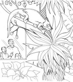 memphis zoo coloring pages - photo#26