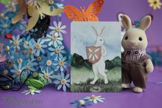 Page of Pentacles - The Rabbit Tarot