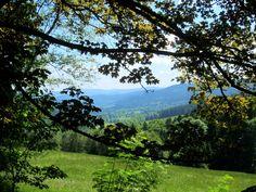 Trail Running in #Sumava NP in #Czech Republic. More: http://trampelpfad.net/