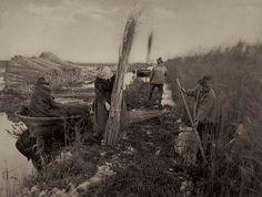 Beyond the Amateur | Photography | Agenda | Phaidon