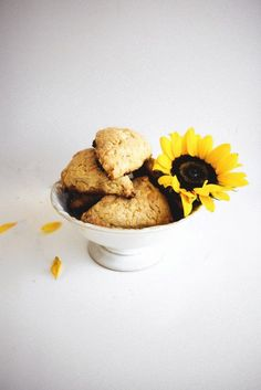 Sunflower, Orange and White Chocolate Scones with Salted Honey Butter | 32 Edible Flowers - The Complete List Of Flowers You Can Eat & Flower Recipe Ideas