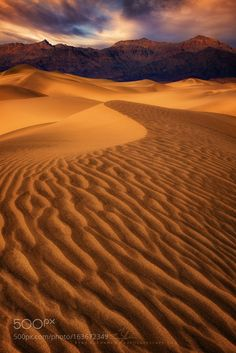 Mesquite Sand Dunes of Death Valley. Incredible lines, textures and compositions in every direction. Had some interesting patchy light here around Deserts Of The World, The Dunes, Death Valley, Beautiful Images, Landscape Photography, Travel Photography, Scenery, Around The Worlds, The Incredibles