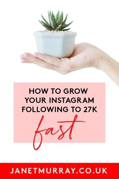 Do you struggle with your Instagram marketing? Is 'getting followers' something you struggle with on Instagram? Click now to learn how you can grow your Instagram following to 27K - and FAST! #instagram #instagramtips #socialmedia Marketing Plan, Content Marketing, Social Media Marketing, Social Media Channels, Social Media Content, Event Company, Marketing Techniques, Instagram Tips, Growing Your Business