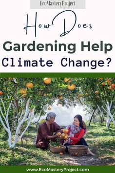 You might not think of gardening as an activity that can help stop climate change, but it is one of the best ways to do so. You will be able to reduce your carbon footprint and have more control over how much you consume. The following are some tips for those looking to know How Does Gardening Help Climate Change. Natural Living, Simple Living, Effects Of Global Warming, Greenhouse Effect, Save Nature, Green Living Tips, Help The Environment, Composting, Green Life