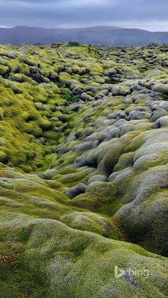 Eidhraun lava field in Laki Fissure System, Iceland (Hans Strand/Corbis)
