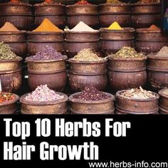 Top 10 Herbs For Hair Growth | Health & Natural Living Stop with expensive 'plugs' and turn to plants!