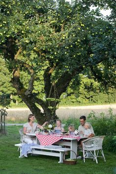 Picnic under the old apple tree....