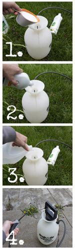 Using Vinegar to kill weeds: •1 gallon of distilled vinegar •1 cup of salt •1 tablespoon of liquid dish soap Vinegar Weed Killer - Steps: *Mix all of these ingredients in an all-purpose spray bottle.