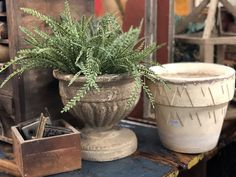 """Great Weathered Concrete Urn   Perfect For A Boxwood Orb or Any Plant   9.5"""" Diameter x 10"""" High  $36  Vintage White Clay Pot  $10  Vintage Affection Dealer #1680  White Elephant Antiques 1026 N. Riverfront Blvd., Dallas, TX 75207"""