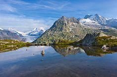 Valais, el reino de las vacas suizas