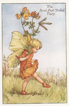 Cicely Mary Barker, Flower Fairies Books, Vintage Fairies, Art Society, Fairy Art, Faeries, Vintage Images, Vintage Prints, Fairy Tales