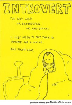 """Introverts aren't broken and need to """"fixed"""".  We're just different and that's a good thing."""
