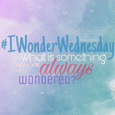 I wonder Wednesday! , I wonder Wednesday!