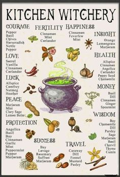 Kitchen witchery Herbs for different purposes 🌿 Wiccan Spell Book, Wiccan Witch, Spell Books, Witch Spell, Magic Herbs, Herbal Magic, Plant Magic, Green Witchcraft, Magick Spells