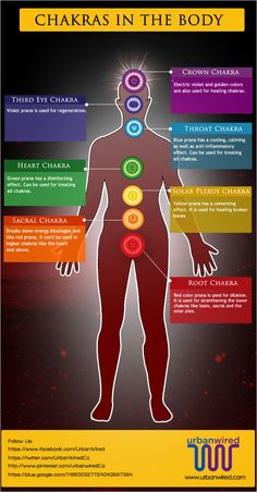 Chakras control several organs in the body; hence, healing with chakra colors works directly on our body's organs and heals our entire physical body.