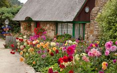 Small garden design ideas - use bright colours like this cottage front garden