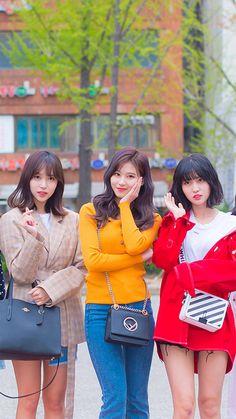 Twice's J-line (Mina, Sana & Momo) Kpop Girl Groups, Korean Girl Groups, Kpop Girls, Nayeon, Asian Woman, Asian Girl, K Pop, Loona Kim Lip, Warner Music