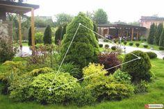 maintenance service northampton, soil heaters, how to put in . Large Backyard Landscaping, Garden Design, Front Yard Landscaping Design, Hardscape, Plants, Landscape Projects, Outdoor Gardens, Backyard Trees, Garden Planning