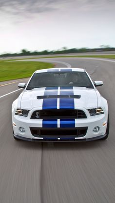 Description: V8 POWER! Check out this SWEET Mustang Shelby GT500 #MusclecarMonday Ford Mustang Shelby Cobra, Mustang Girl, Ford Mustang Shelby Gt, Mustang Gt500, Shelby Gt500, Ford Gt, Muscle Cars, Ford Shelby Gt 500, Mustangs