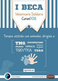 Beca para tratar TDAH, TEA, discapacidad, víctimas de violencia de género, tercera edad. Más info en www.veterinariosolidario.es