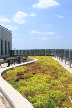 Michigan Allen Grand Valley State University Library | LiveRoof Hybrid Green Roofs