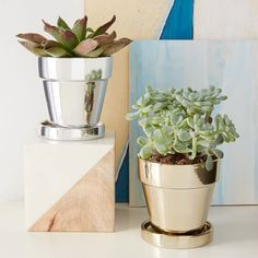 Metallic planters from West Elm.  You could do the same with some mirror spray paint, and some terracotta plant pots, and matching saucers.  Love the way that they do two jobs - provide a place to grow the plants, and act as mini mirrors to reflect light!  Lovely idea!