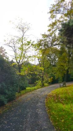 Wells Park, Sydenham, South East London
