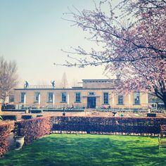 Dordrecht - Villa Augustus
