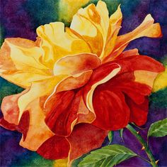 Drama Queen, rose floral artwork. Heidi Rosner watercolors feature European & Southwest landscapes, floral, botanicals, still lifes. Commissions available.