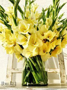 Gladiolas arrangement.....as soon as mine bloom