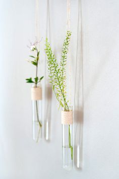 Those hanging vases is a set of 2 wall tube vases. Those glass hanging vases is a beautiful pair of hanging vases that are perfect for a mothers day gift. A set of 2 hanging vases wrapped and attached to a solid oak cube. Pure and simple presence. Hanging Flower Arrangements, Hanging Flower Pots, Flower Wall, Flower Vase Design, Flower Vases, Hanging Wall Vase, Wall Vases, Interior Art Nouveau, Glass Cylinder Vases