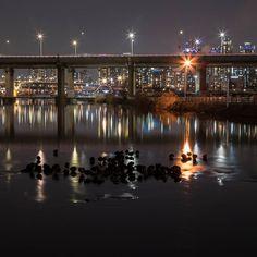 Han River Park #seoul #southkorea #bynight #janoskim #photography #www.janoskim.com #neverenough