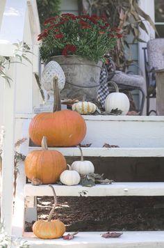 Fall Porch Tour - an