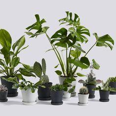 Vi har en glædelig nyhed til jer! De populære flower pots fra Hay er på lager igen. Priser fra 79 kr.#bahne #hay