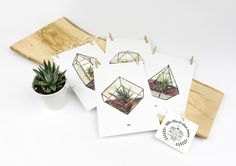Terrarium Postcard Set with paper clips & cord