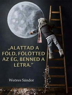The earth below you, the sky above you, the ladder inside! Good Sentences, Illustrations And Posters, Source Of Inspiration, Powerful Words, Good Thoughts, Inner Peace, Timeline Photos, Favorite Quotes, Quotations
